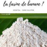 Article explicatif pour savoir comment utiliser la farine de banane verte.