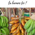 Article pour savoir comment cuisiner la banane fei ?