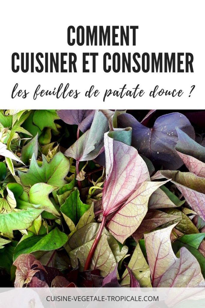 Article pour savoir comment consommer et cuisiner les feuilles de patates douces ?