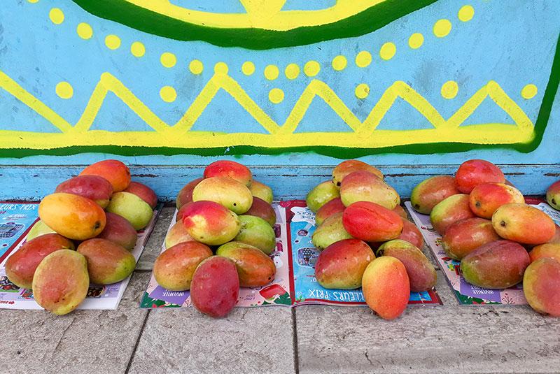 Mangues posées en tas sur le trottoir à Tahiti.