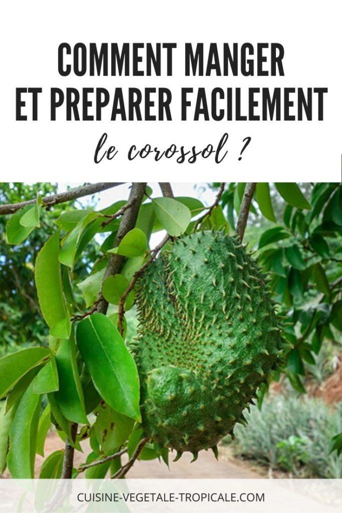 Article pour savoir comment manger et préparer facilement le corossol ?