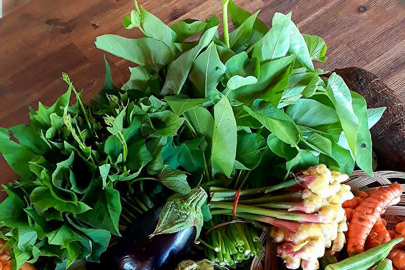 Bouquet de feuilles de patates et de liseron d'eau, gingembre frais, aubergine.