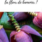 Article pour apprendre à cuisiner la fleur de bananier.